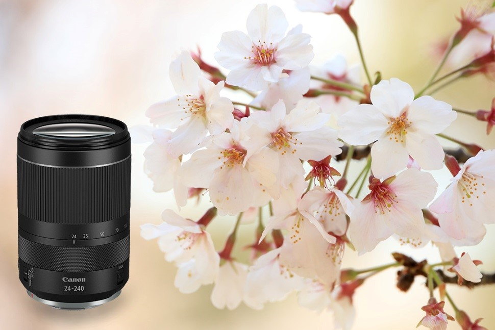 Canon's new RF24-240mm f/4-6.3 IS USM,  the perfect all-in-one travel lens